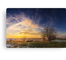 Naturehold Canvas Print
