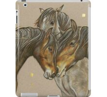 Meet and Greet iPad Case/Skin