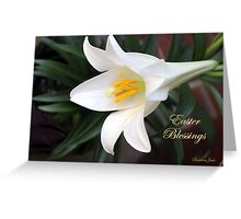 The Easter Lily ~ a Biblical Flower Greeting Card
