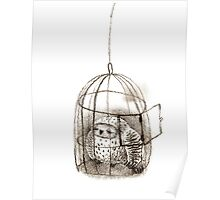 Great Grey Owl Sleeping In a Birdcage Poster