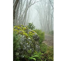 Lake Mountain Mist Photographic Print