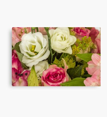 Two white roses Canvas Print