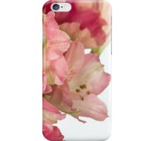 Flowers petals on a white background iPhone Case/Skin