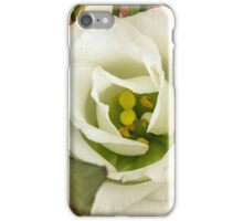 One big rose iPhone Case/Skin