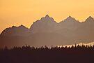 southern olympic mtn sunset, washington, usa by dedmanshootn