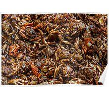Fresh Crab Korean Market Poster