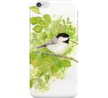 Cute Little Black-Capped Chickadee Watercolor iPhone Case/Skin