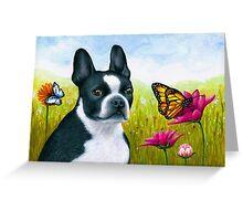 Dog 134 Boston Terrier Greeting Card