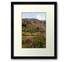 Bwindi National Park, Uganda Framed Print