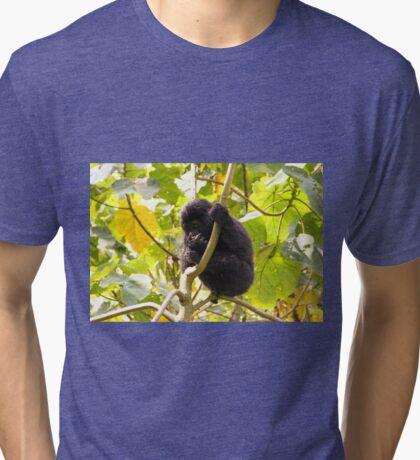 Gorilla Baby, Uganda Africa Tri-blend T-Shirt