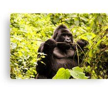 Gorilla in the wild Canvas Print