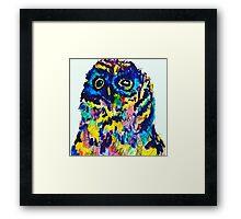 OWL POPS Framed Print