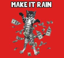 Make it rain cat - dollar bills! by Cessull