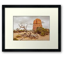Fallen Tree - Arches National Park Framed Print