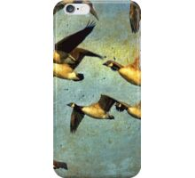 Canada Goose Flock iPhone Case/Skin