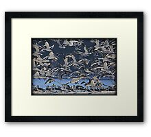 Freezing Frenzy Framed Print