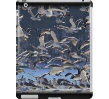 Freezing Frenzy iPad Case/Skin