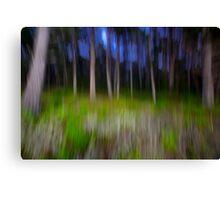 Carmel Cypress Trees Canvas Print