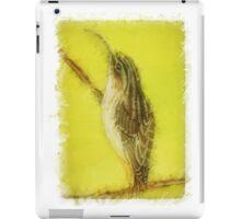 Brown Creeper iPad Case/Skin