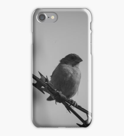 Lonely Bird (BW) iPhone Case/Skin