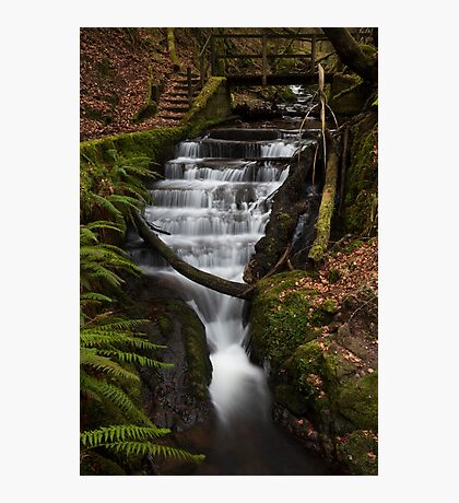 dhulin burn Photographic Print