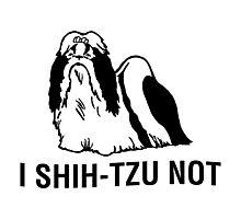 Shih-tzu-not Photographic Print
