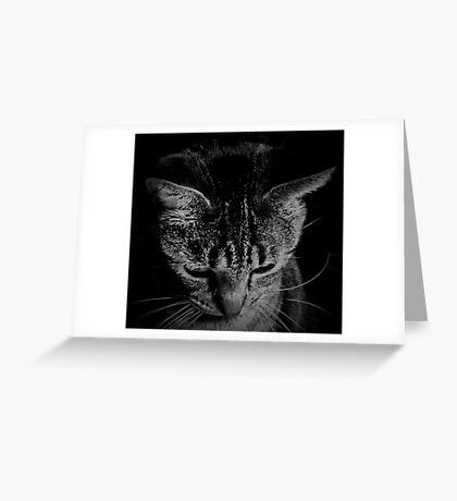 Pensive Cat Greeting Card