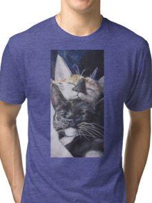 Sleepy Cats Tri-blend T-Shirt
