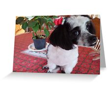 Sweet Puppy Greeting Card