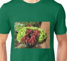 Our Beautiful Bushes - Sunlit Red and Green Coleus Unisex T-Shirt
