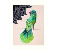 Fancy tailed bird Art Print