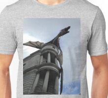 Harry Potter dragon Unisex T-Shirt