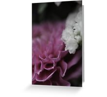 flower close up five Greeting Card