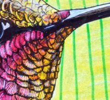 Anna's Hummingbird Sticker
