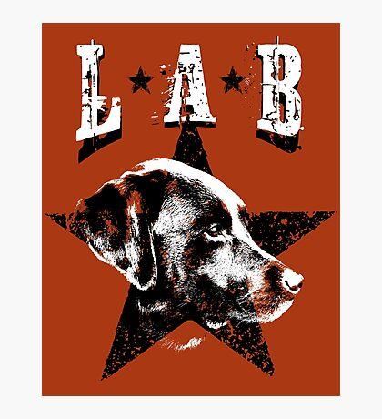 Black Lab Photographic Print