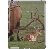 Framed Protection iPad Case/Skin