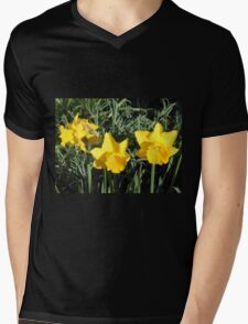 Daffodil Delight Mens V-Neck T-Shirt