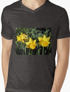 Daffodil Delight Mens V-Neck T-Shirt