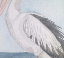 Lone Pelican Watching and Waiting Sticker