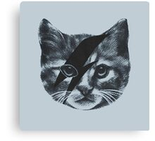 Stardust Cat Canvas Print