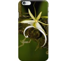 The Elusive Ghost Orchid iPhone Case/Skin