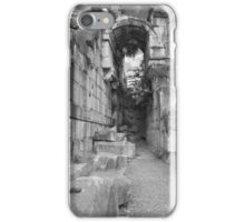 Ancient Ruins iPhone Case/Skin
