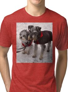 Freeze a jolly good fellow (or two) Tri-blend T-Shirt