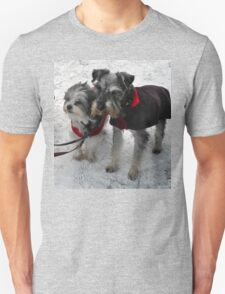 Freeze a jolly good fellow (or two) Unisex T-Shirt
