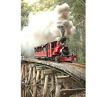 861 Crossing Photographic Print