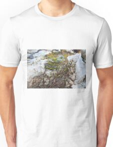 Moss in a River of Wood T-Shirt