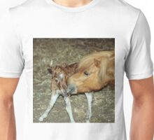 Mare with New Born Foal Unisex T-Shirt