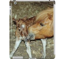 Mare with New Born Foal iPad Case/Skin