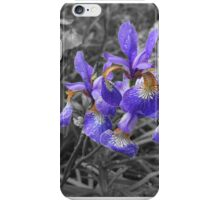 Iris breaking out from the gloom iPhone Case/Skin