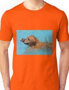 Darcy Swimming Unisex T-Shirt